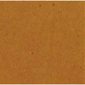 CW Camel (2 x 2)  (3 x 3)  (4 x 4)
